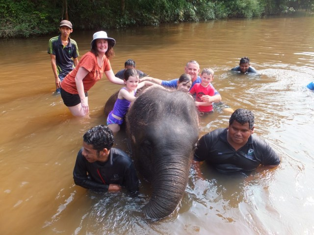 We were able to wash the elephant, kids loved having this experience.