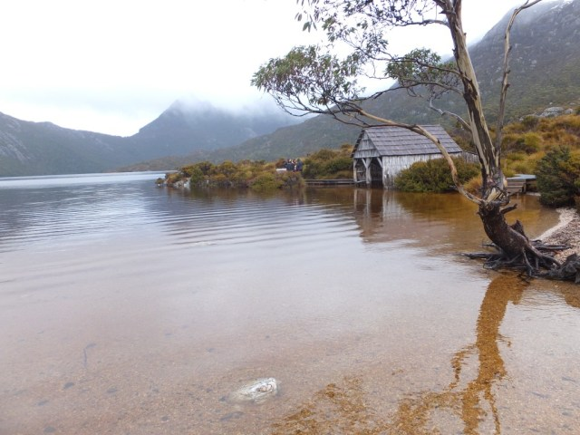 Boat Shed - Cradle Mountain
