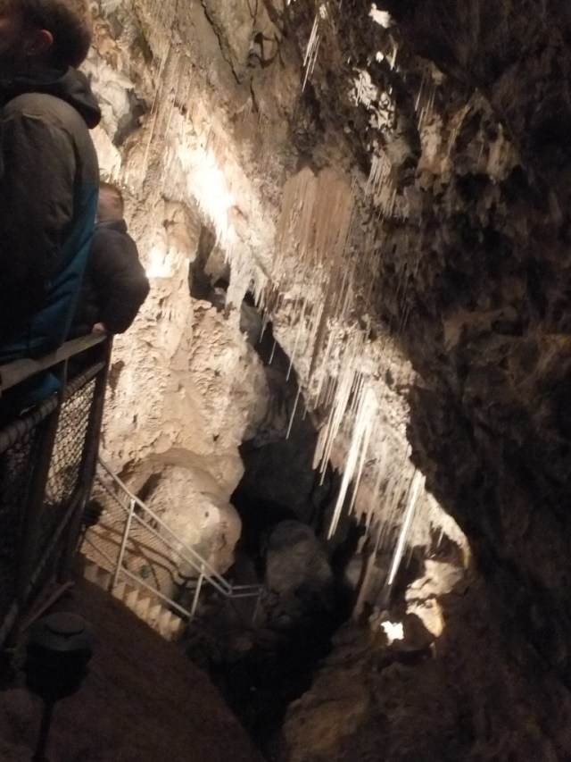 Mole Creek Cave