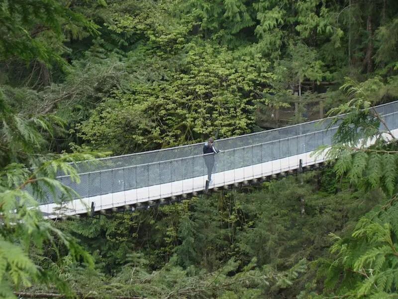 Capilano Suspension Bridge Complete Guide