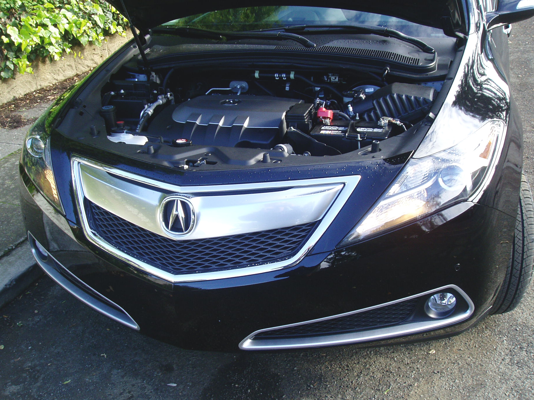 acura truth sale refreshing signs for cars nhtsa zdx advance be death may warrant about the