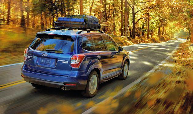 206 Subaru Forester rear q