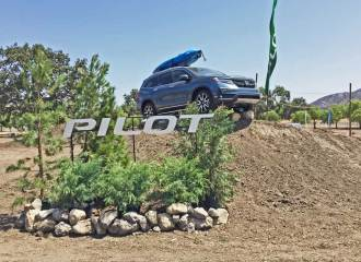 Honda-Pilot-Elite-Disp