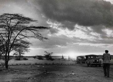 Awash National Park, Ethiopia, Δεκέμβριος 1955. Σαφάρι