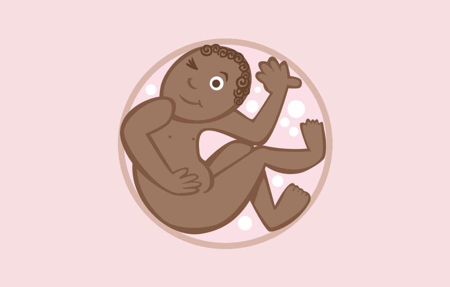 Pregnancy Calendar – Week 29