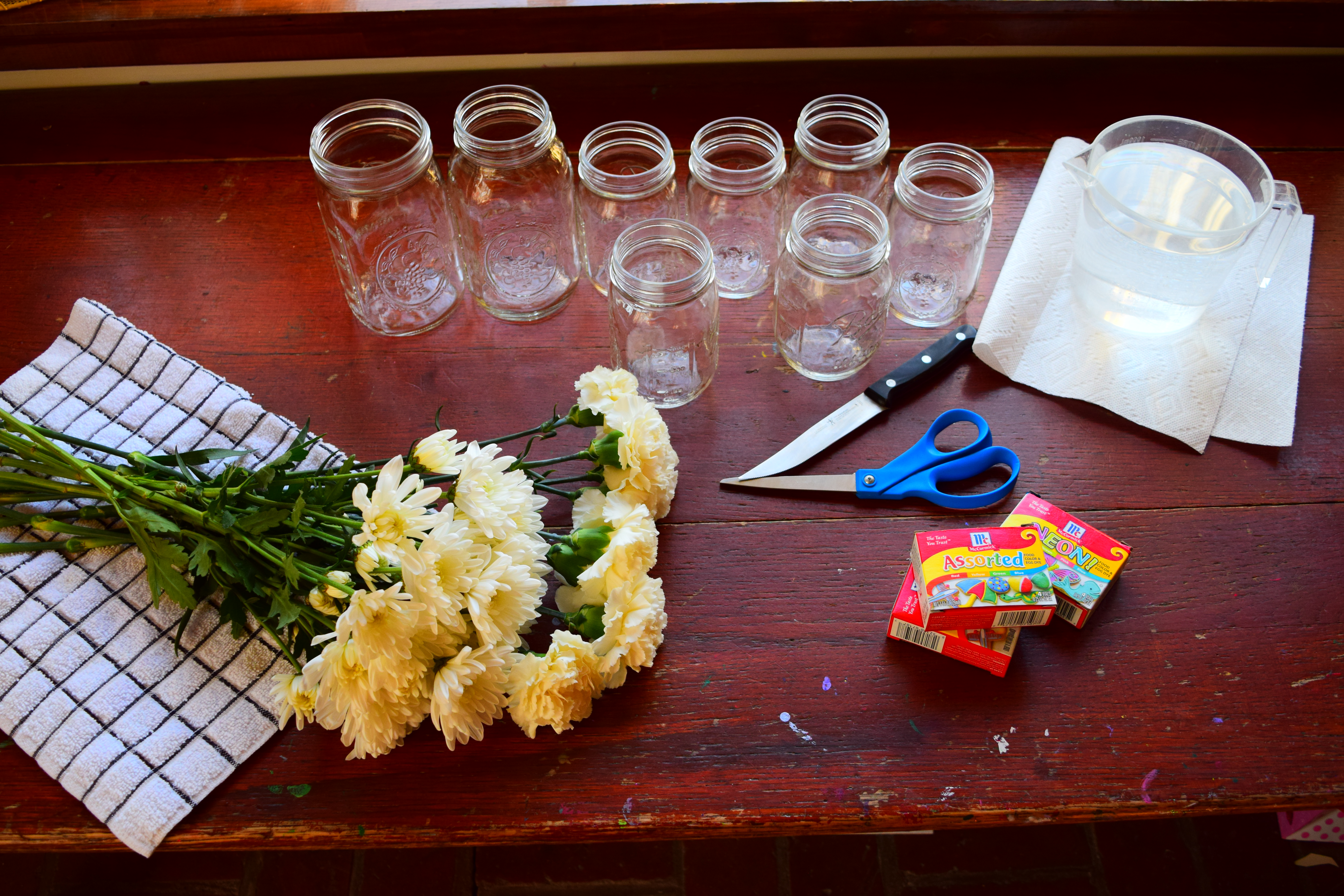 Color Changing Carnations – Our Beautifully Messy House