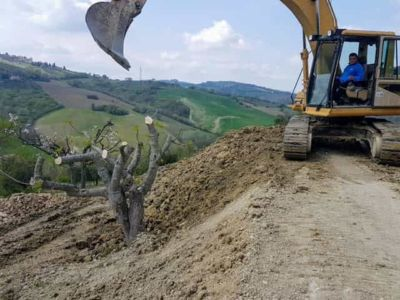 Dumping Earth Behind the Fig at new house construction site in Le Marche
