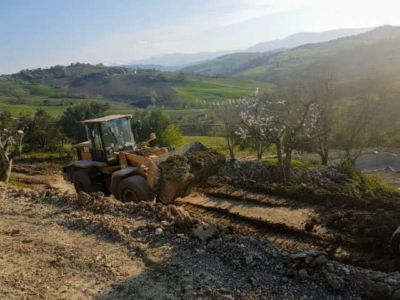 Moving Earth Near Cherry Tree at house being constructed in Le Marche