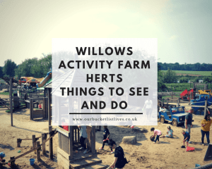 Willows Activity Farm Herts | Things to See and Do | Day Out Review