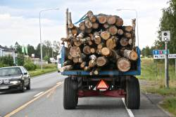 Slow Traffic & Plenty Logs