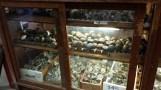 Vintage brass door knobs in a glass display case