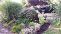 Herb garden with mulch