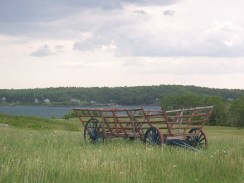 Old hay wagon in grren field