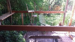 Adirondack chair in large catio