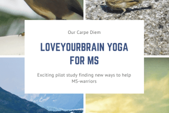 LoveYourBrain Yoga for MS An exciting new pilot study on using #LoveYourBrain #yoga for #MultipleSclerosis | #MS. Find out more about this study and how a snowboarding accident led to #free yoga and meditation classes for #TraumaticBrainInjury | #TBI survivors. Watch the #CrashReel documentary about #KevinPearce and find out how it all started. #MSresearch #MS-warrior #MSAwareness #OurCarpeDiem