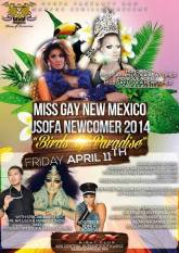 Show Ad | Miss Gay New Mexico USofA Newcomer | 4/11/2014