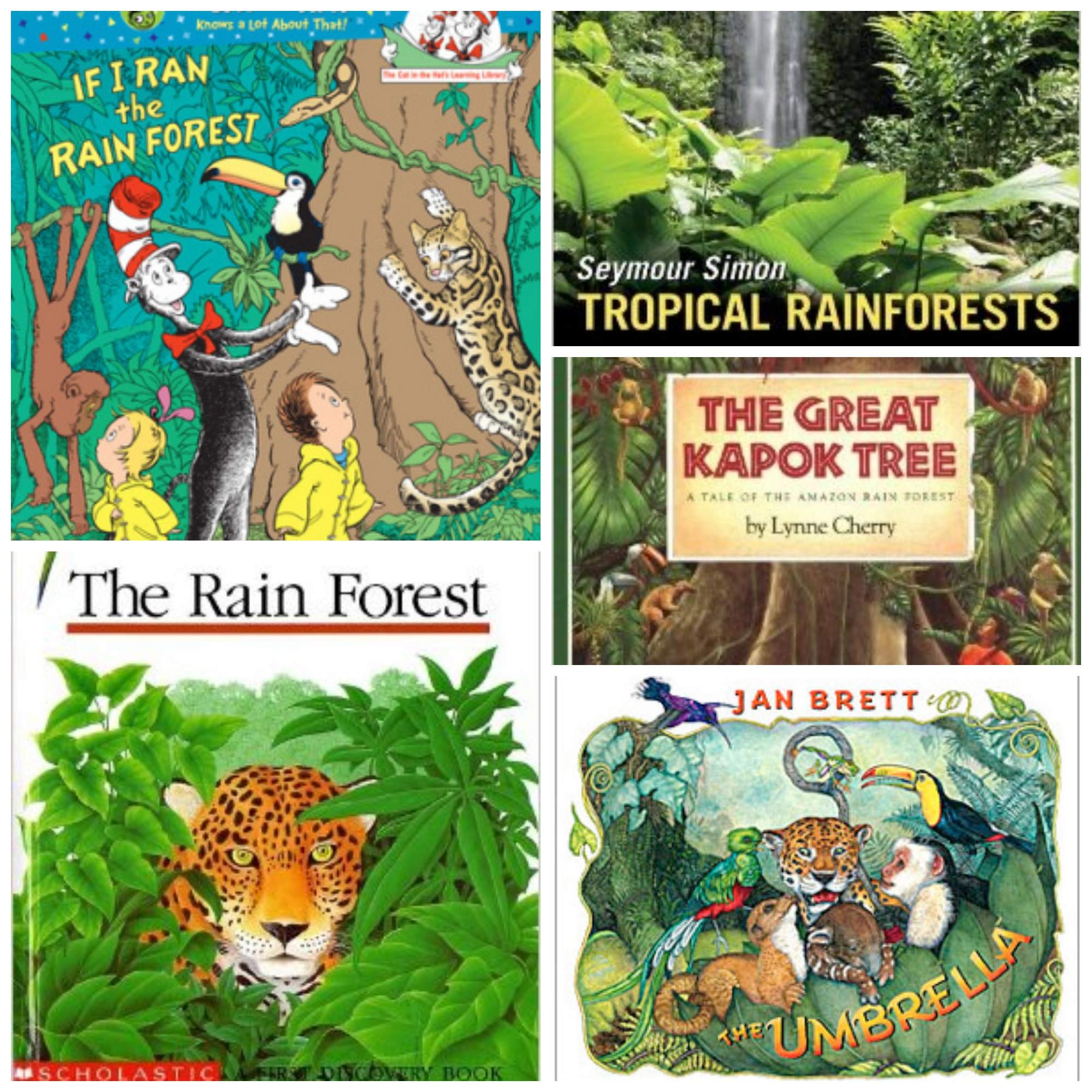 Our Crafts N Things Blog Archive Rainforest Unit