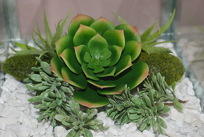 How To Make A Beautiful Succulent Terrarium Centsible Chateau #succulentterrarium #succulentlantern #terrariums