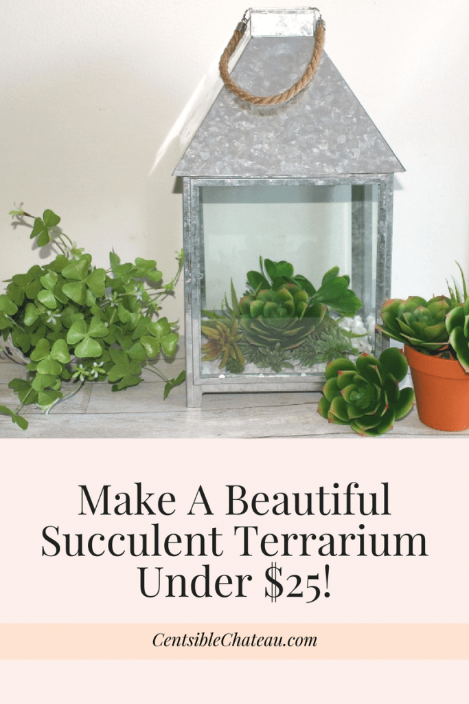 Make A Beautiful Succulent Terrarium Under $25! Centsible Chateau #succulentterrarium
