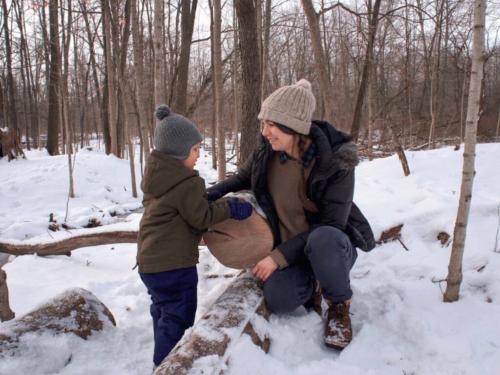 Learning About Tree Rings With Kids