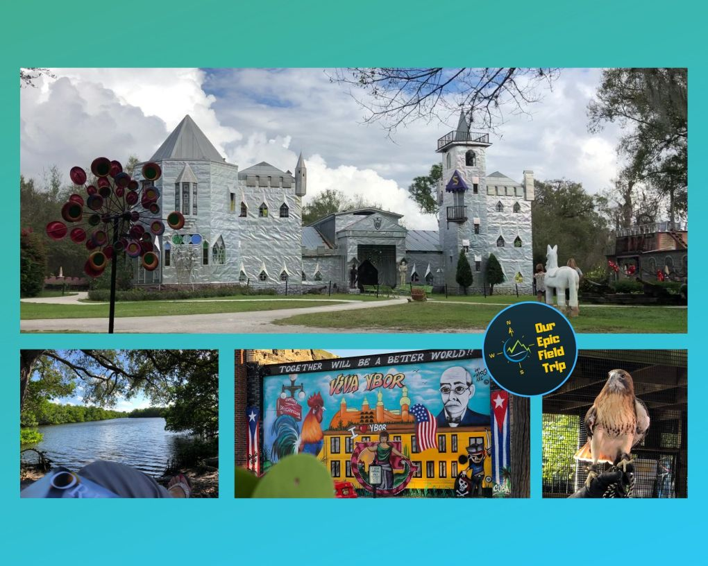 Fun Things to do inTampa Florida Oddities