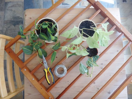 DIY Plant Hanger with Repurposed Baby Gates (4)