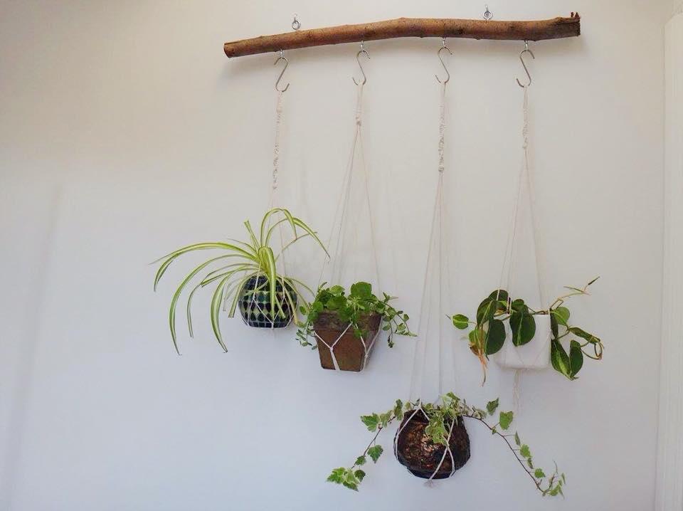 Branch Macrame Plant Hanger DIY (14)
