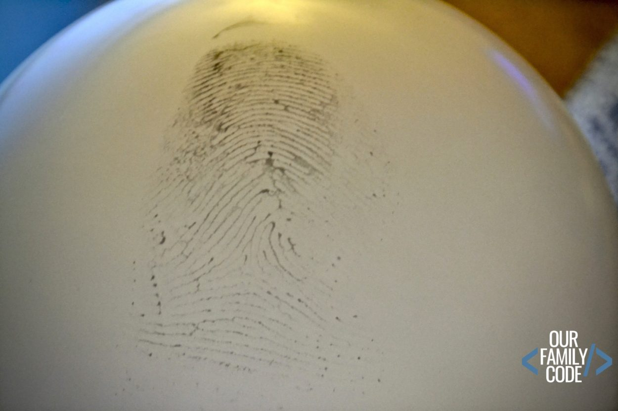 Family Fingerprint Investigation Steam Activity