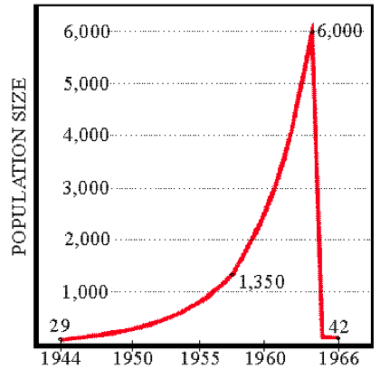 Figure 3. Assumed population of St. Matthew Reindeer herd, with actual counts given. Based on research of  David R. Klein.
