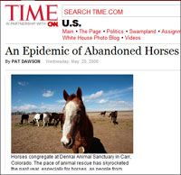 Time Magazine - Abandoned Horses Article