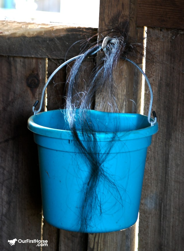 Tail hair stuck on a bucket