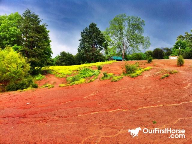 Pasture erosion after storm