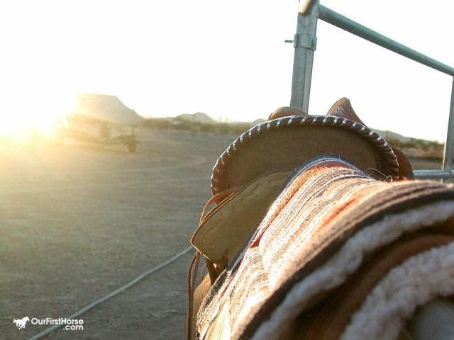 Saddle in the sunset