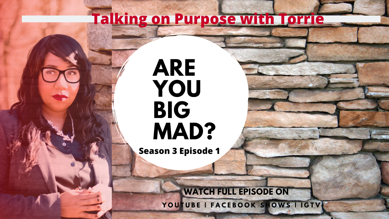 Talking on Purpose with Torrie Season 3 Premier