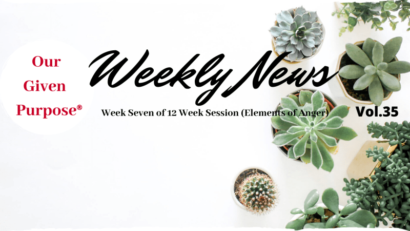 Weekly News, Vol 35