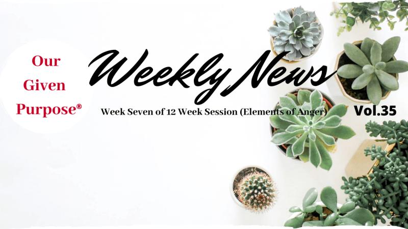 Weekly News, Vol 35