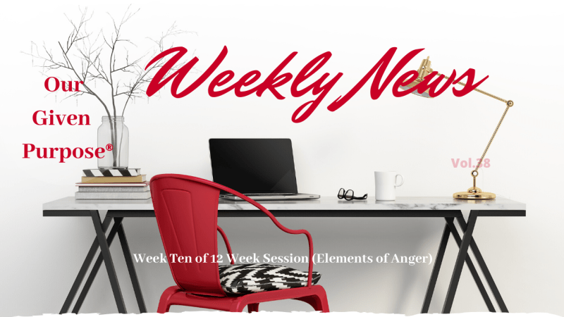 Weekly News Vol 38