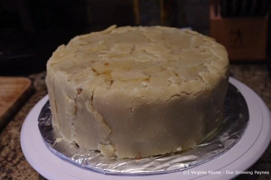 Christmas Cake 19 2012