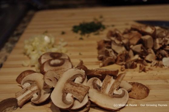 mushroom soup 1 2013