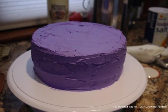 Chocolate Birthday cake 3 2013