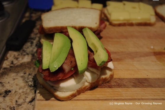 Grilled tomato avocado cheese 4 2013