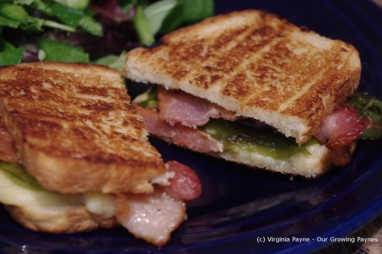 roasted jalapeno grilled cheese 8 2013