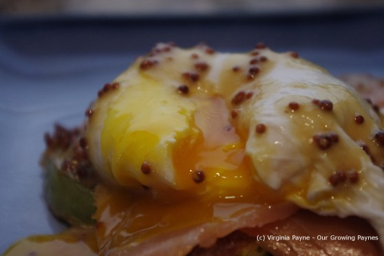 Poached egg and salmon 9 2013