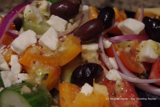Greek dinner 14 2013
