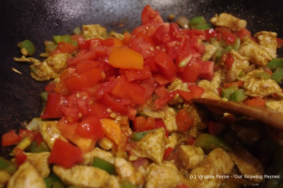 Chicken jhalfrazi 10 2013