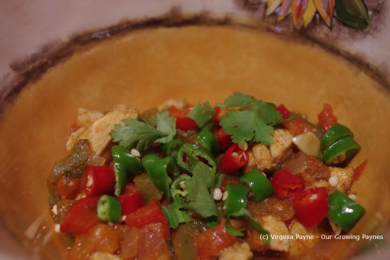 Chicken jhalfrazi 11 2013