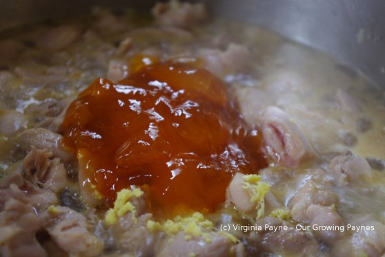 Apricot Ginger Chicken 5 2014