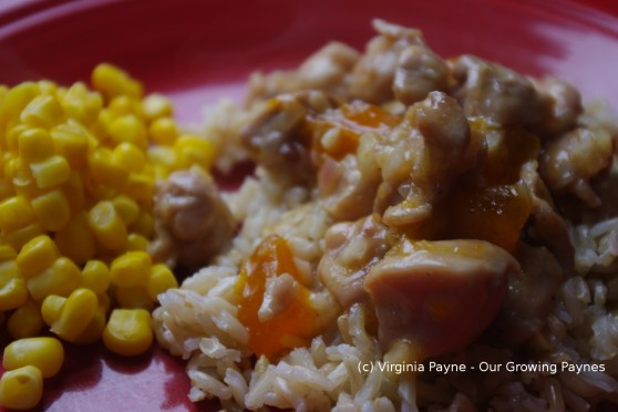 Apricot Ginger Chicken 6 2014