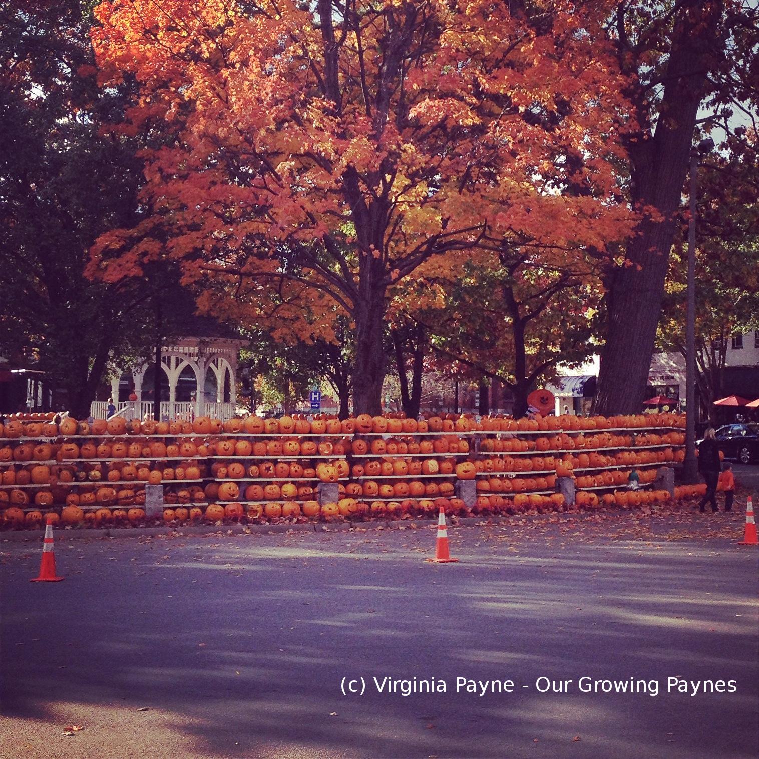 Keene PumpkinFest vs Keene State Rioting ⋆ Our Growing Paynes
