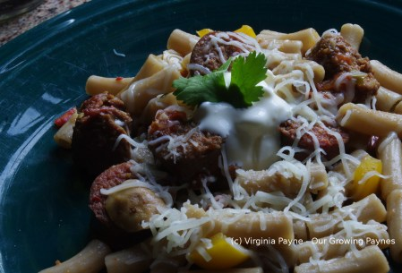 Jalapeno sausage and pasta 4 2015
